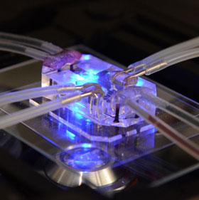 """""""Chip phổi"""" và triển vọng thay thế nghiên cứu trên động vật"""