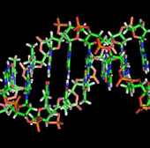Mã vạch ADN chống hàng dỏm
