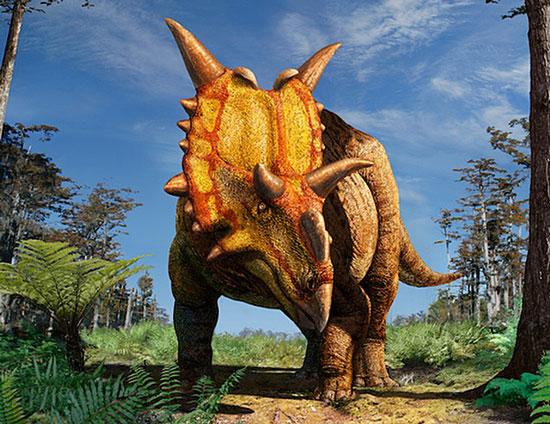 Loài khủng long có sừng Xenoceratops.