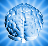 Tranh cãi về sự giảm sút trí tuệ của loài người