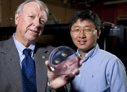 Hai nhà khoa học đứng đầu nhóm nghiên cứu đến từ Học viện Công nghệ Massachusetts và Đại học Rice bên mẫu siêu vật liệu bắt dính đạn bay trong phòng thí nghiệm.