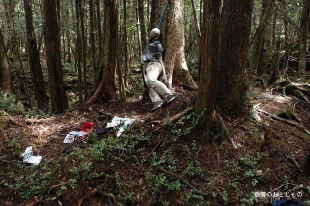 Rừng tự tử Aokigahara