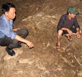 Phát hiện dấu vết con người ở gần hang Con Moong