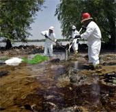 Hơn 200 triệu người có nguy cơ nhiễm độc từ môi trường