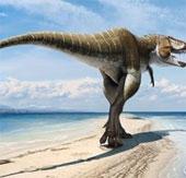 Phát hiện khủng long bạo chúa mới