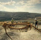 Sắp đến thời của rắn khổng lồ