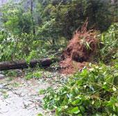 Bão Haiyan đã ra khỏi Việt Nam, ít nhất 13 người chết