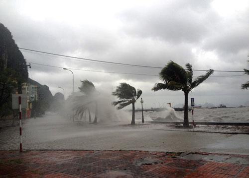 Bão Haiyan đánh sập cột ăng ten truyền hình Uông Bí