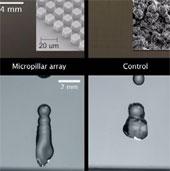 Video: Giới thiệu vật liệu chống thấm hoàn hảo mới