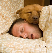 Thói quen ngủ nguy hiểm có thể bạn chưa biết