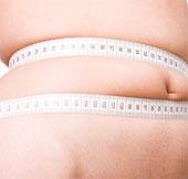 Công nghệ cấy ghép mạch điều tiết gene chữa béo phì