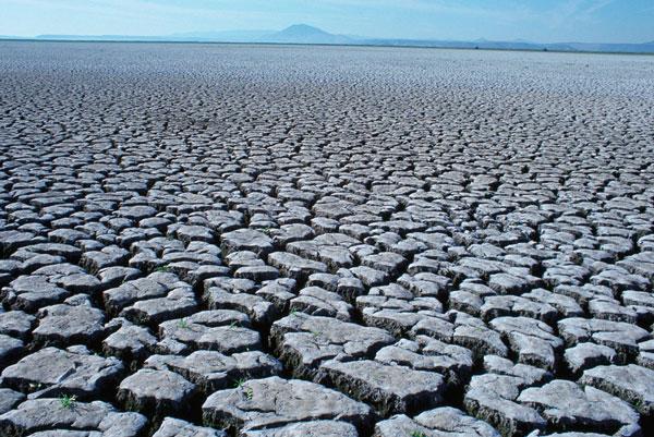 Đợt hán hạn khiến đất nứt nẻ ở trong đợt hạn hán ở châu Âu năm nay.
