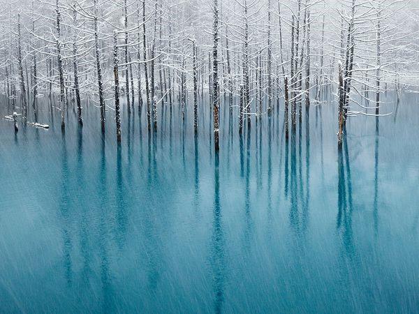 Mặt hồ xanh ở khu nghỉ dưỡng Biei thuộc Hokkaido (Nhật Bản) bị đóng băng khi thời tiết bắt đầu vào đông. Địa điểm hồ xanh thu hút rất nhiều khách du lịch tới tham quan trong mùa xuân, hè và thu