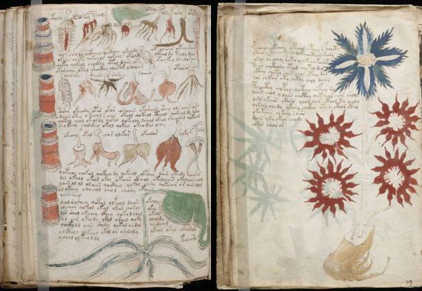 Bản thảo bí ẩn nhất thế giới đã được giải mã