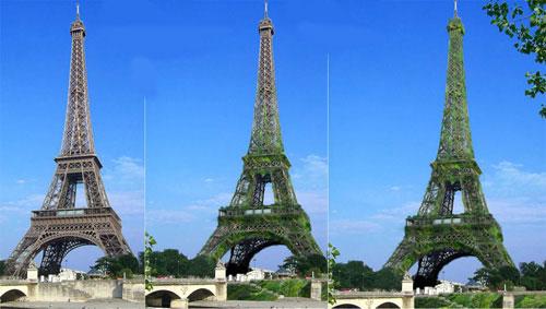 """""""Cây xanh khổng lồ"""" giữa Paris"""