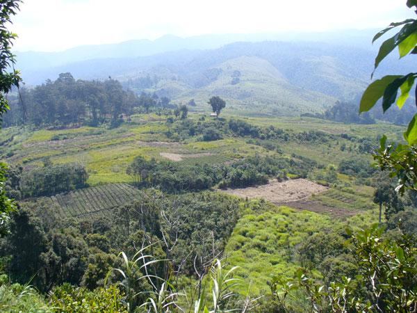 Động đất mạnh 7,1 richter rung chuyển Papua New Guinea