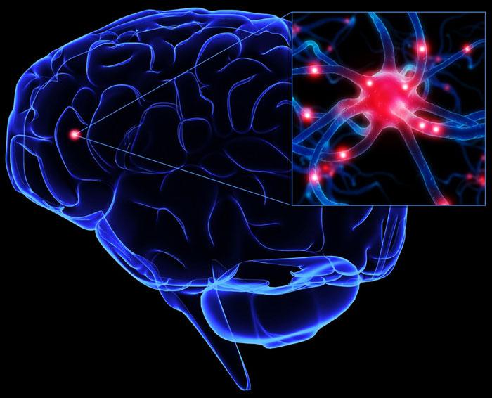 """""""Nhìn"""" não bắt gian lận"""