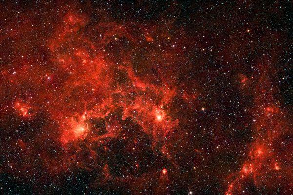 Kính thiên văn vũ trụ Spitzer của NASA ghi lại được hình ảnh những ngôi sao đang hình thành trong tinh vân Dragonfish. Những phần có màu sáng rực là khu vực có những ngôi sao đang hình thành.