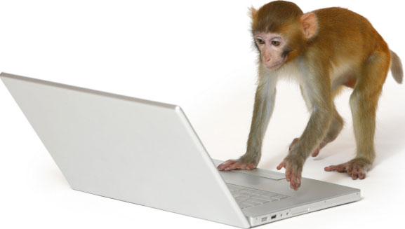 Khỉ điều khiển màn hình cảm ứng