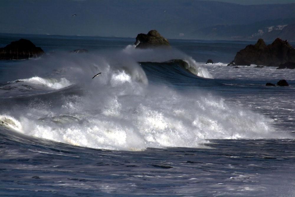 Biển động bởi bão.