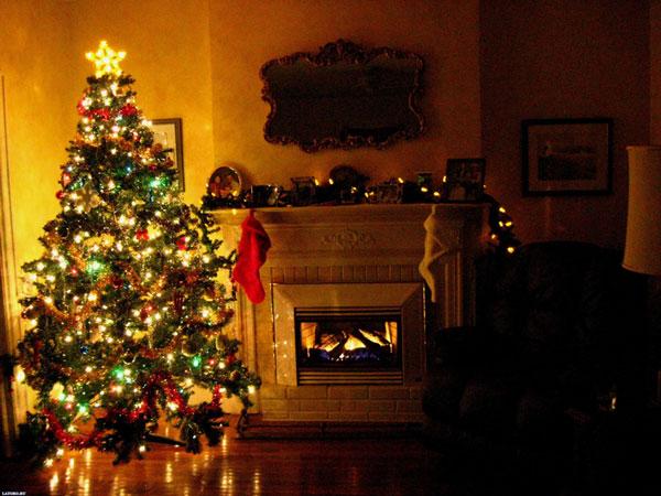 Cây Giáng sinh có thể gây ra những vấn đề về đường hô hấp