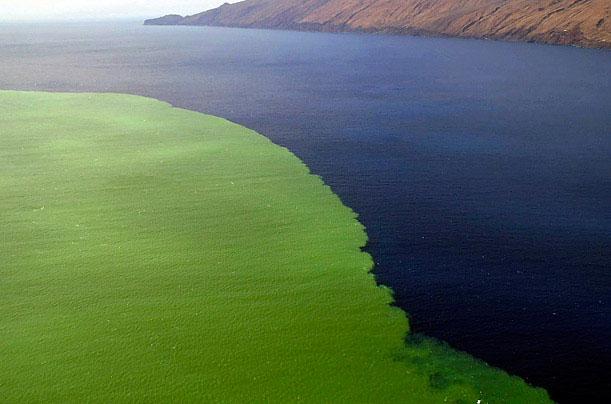 Dung nham và lượng khí thải từ núi lửa dưới nước ở quần đảo Canary, Tây Ban Nha làm thay đổi màu sắc đại dương. Sự kiện xảy ra ngày 17/10/2011.