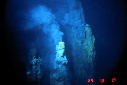 """""""Pin"""" sống dưới lòng biển sâu"""