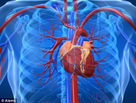 Trung Quốc tìm ra cách chữa trụy tim đột phá