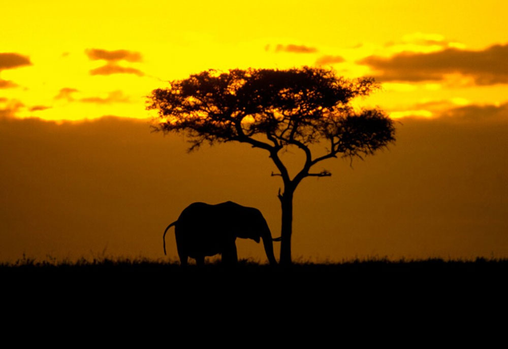 WMO tăng cường các dịch vụ khí hậu ở châu Phi