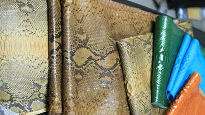 Các sản phẩm được chế biến từ da trăn