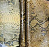 Trăn bị đe dọa vì vấn nạn xuất khẩu da