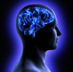 Nguồn gốc tiến hóa của trí thông minh