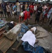 Philippines: Bão Bopha làm 900 người chết, mất tích