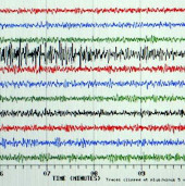 Động đất 7,2 độ Richter ở Indonesia