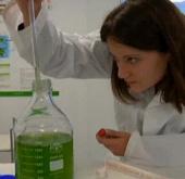 Tạo năng lượng từ tảo