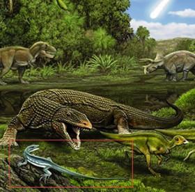 Thằn lằn tuyệt chủng mang tên Obama