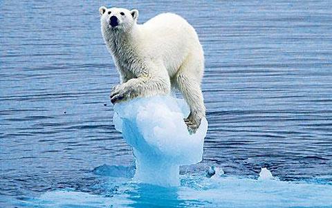 Giới khoa học cho rằng, biến đổi khí hậu mới chính là mối đe dọa con người hiện hữu nhất, do đó loài người hãy đứng lên bảo vệ  môi trường và sự sống của chính mình hơn là đặt niềm tin vào những điều huyễn hoặc.