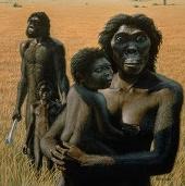 Tổ tiên của con người sống được nhờ ăn cỏ