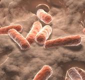 Chất carotenoid trong ruột liên quan đến đột quỵ