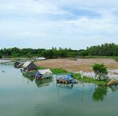 Bảo vệ các loài cá quý hiếm tại búng Bình Thiên