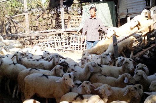 Gấp rút bảo vệ nguồn gene đa dạng sinh học của Việt Nam