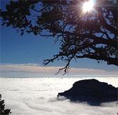Video: Biển sương mù phủ quanh hẻm núi Grand Canyon