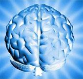 """Di truyền """"thể khảm"""" của não có thể gây bệnh"""
