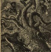 Tìm thấy bằng chứng về sự tồn tại của thủy quái Kraken