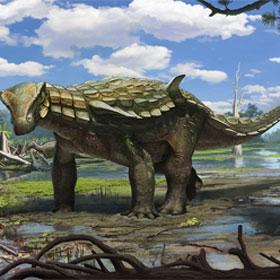 """Khám phá khủng long """"bọc thép"""" chưa từng được biết đến"""