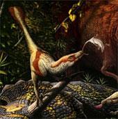 Phát hiện hóa thạch khủng long ăn thịt mới ở Canada