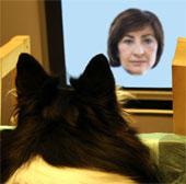 Chó biết nhận diện khuôn mặt