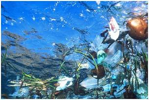 Hơn 6 triệu tấn rác thải bị tống xuống biển mỗi năm