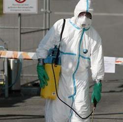 H5N1 tái phát ở Đức