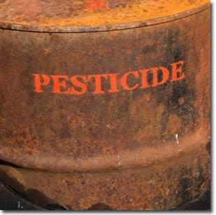 Hiểm hoạ từ những hóa chất diệt côn trùng